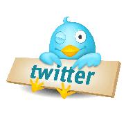 Twitter Bird Sign Small